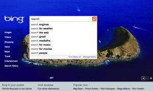 Search for Search on Bing
